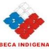 Beca Indigena