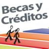 Beca Nuevo Milenio en Chile